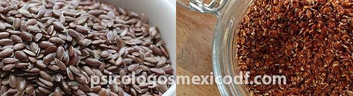 linaza semilla para el tratamiento de la menopausia