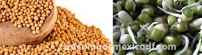 soya alimento para el tratamiento de la menopausia