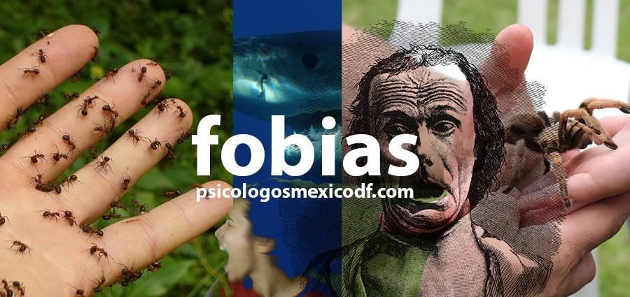 agorafobia, fobia social y otros tipos de fobias
